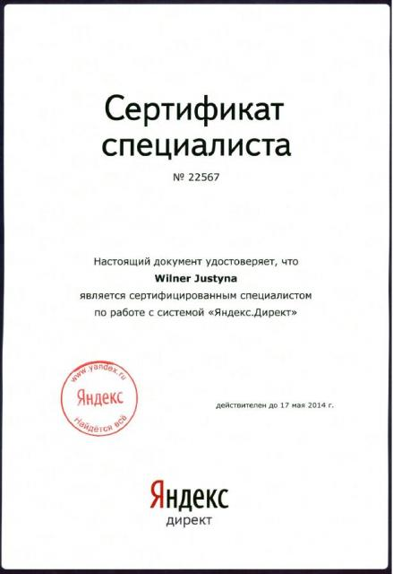 Yandex Expert Certificate