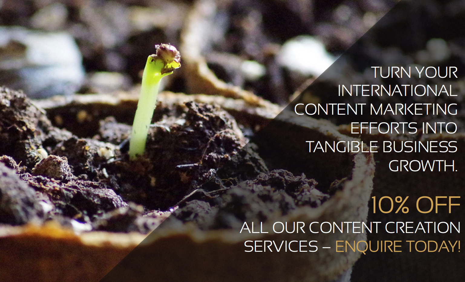 International Content Marketing Creation Services
