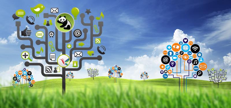 internaitonal content creation