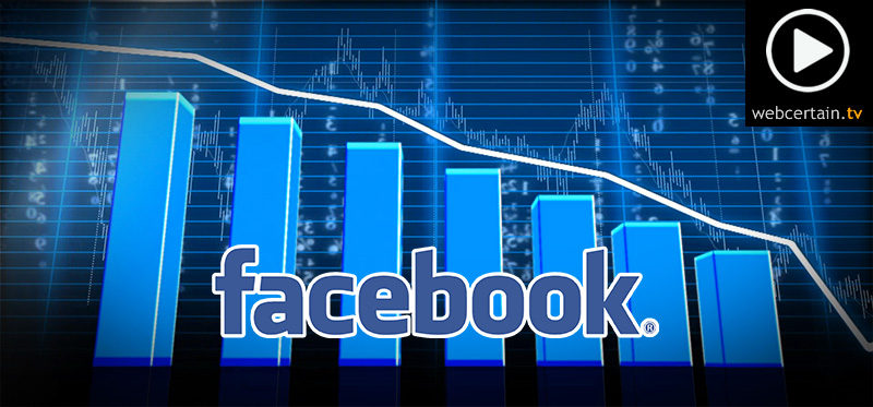 Facebook Suffers Revenue Drop
