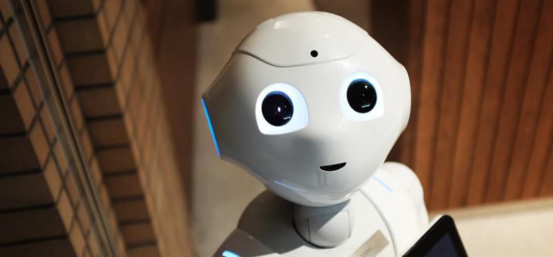 localising-chatbot-1